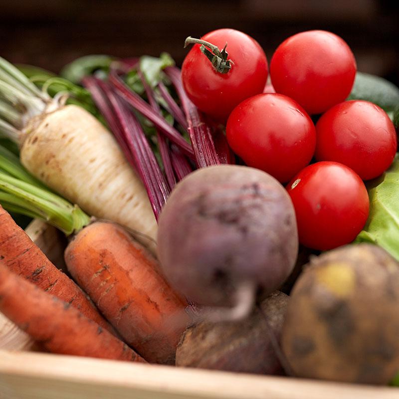 5-verduras-verano